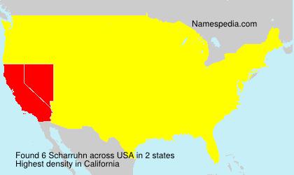Scharruhn - USA