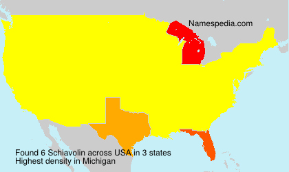 Surname Schiavolin in USA