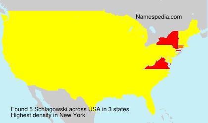 Surname Schlagowski in USA