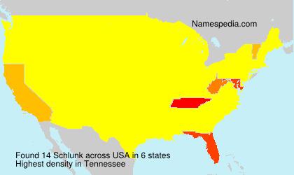 Familiennamen Schlunk - USA