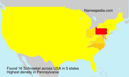 Familiennamen Schnaekel - USA