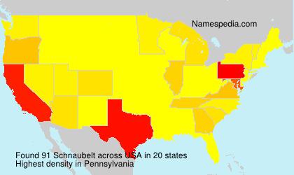 Schnaubelt - USA