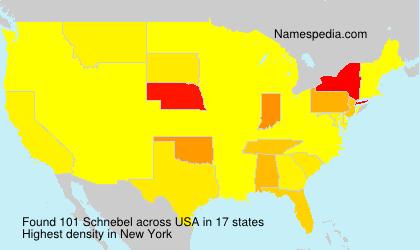 Familiennamen Schnebel - USA