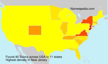 Familiennamen Sciora - USA