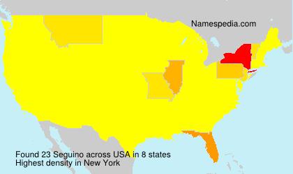 Familiennamen Seguino - USA