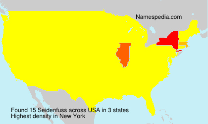 Surname Seidenfuss in USA