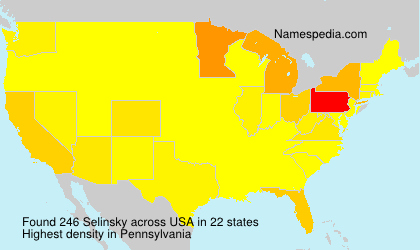 Surname Selinsky in USA