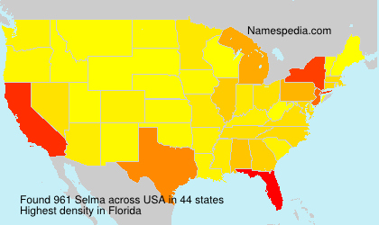 Surname Selma in USA