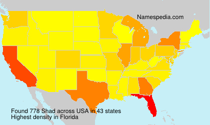 Surname Shad in USA