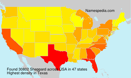 Surname Sheppard in USA