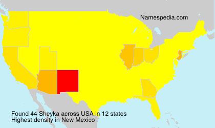 Surname Sheyka in USA