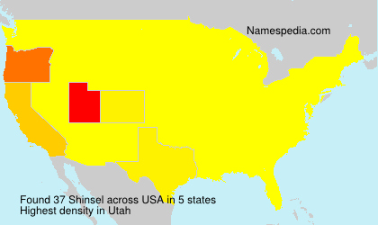 Surname Shinsel in USA