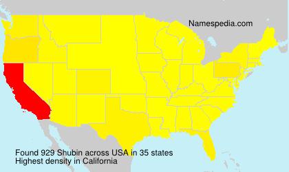 Familiennamen Shubin - USA