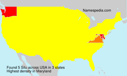 Surname Silu in USA