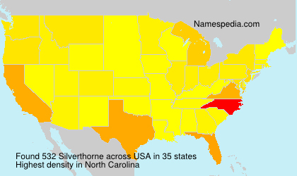 Surname Silverthorne in USA