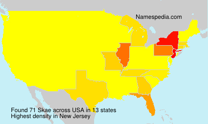 Surname Skae in USA