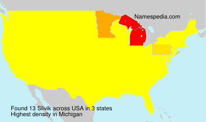 Surname Slivik in USA