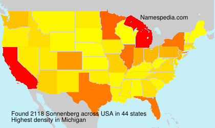 Surname Sonnenberg in USA