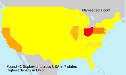 Surname Sopkovich in USA