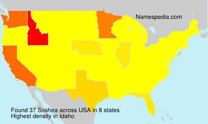 Surname Soshea in USA
