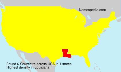 Surname Souvestre in USA