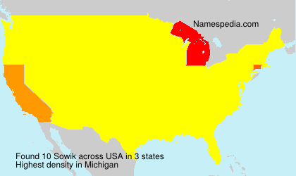Surname Sowik in USA