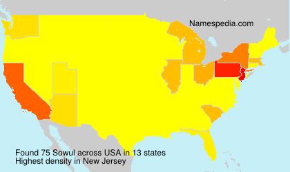 Surname Sowul in USA