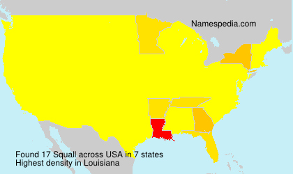 Squall - USA