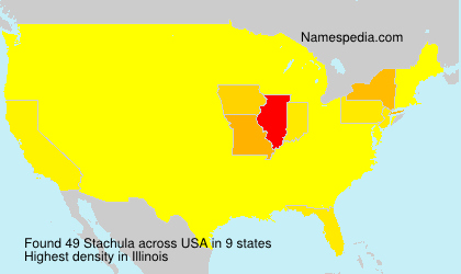 Surname Stachula in USA