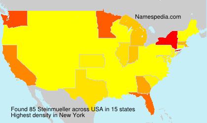 Surname Steinmueller in USA