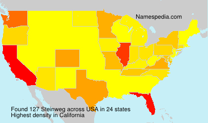 Surname Steinweg in USA