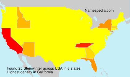 Surname Steinwinter in USA