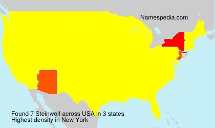 Familiennamen Steinwolf - USA