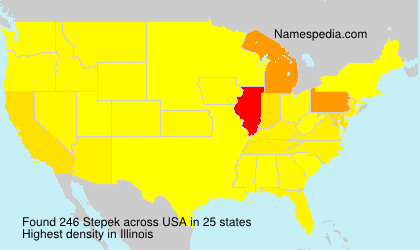 Surname Stepek in USA
