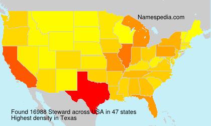 Steward - USA