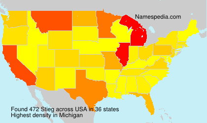 Surname Stieg in USA