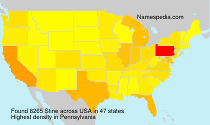 Surname Stine in USA