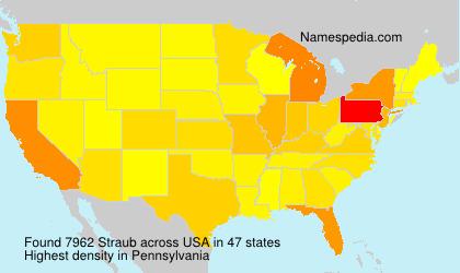 Surname Straub in USA