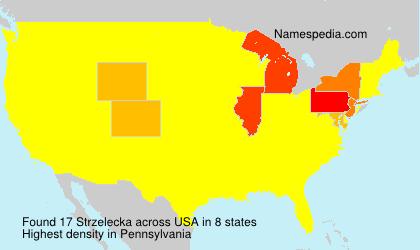 Surname Strzelecka in USA