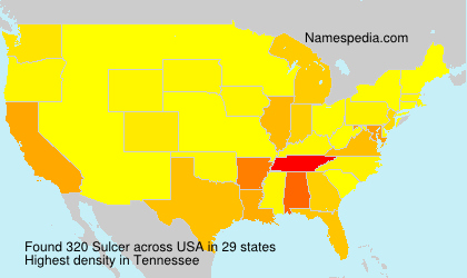 Surname Sulcer in USA