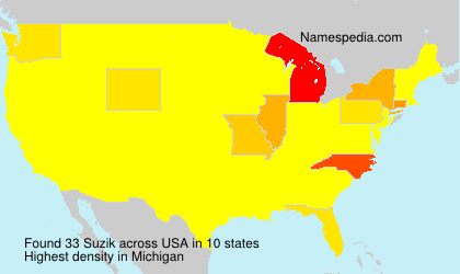 Surname Suzik in USA
