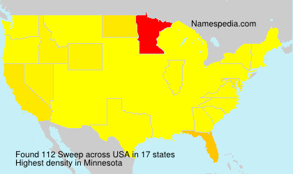 Surname Sweep in USA