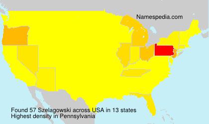 Surname Szelagowski in USA