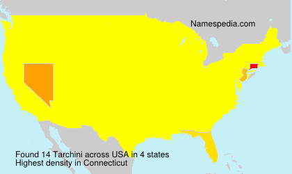 Surname Tarchini in USA