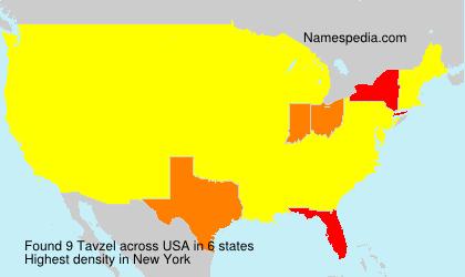 Surname Tavzel in USA