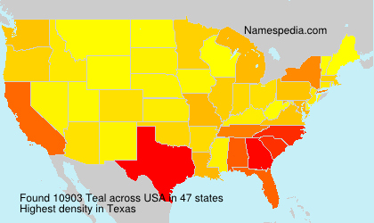 Familiennamen Teal - USA