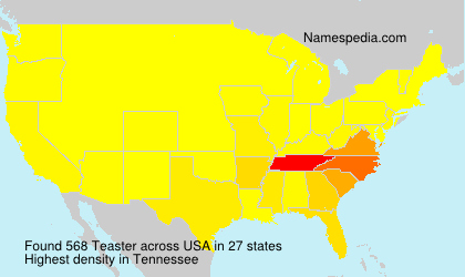 Familiennamen Teaster - USA