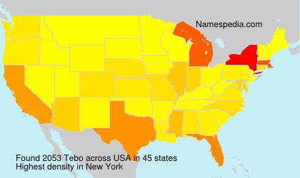 Surname Tebo in USA