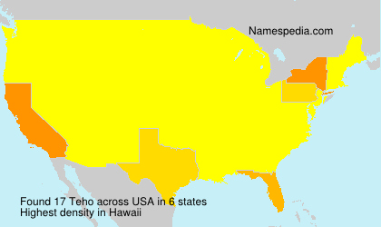 Surname Teho in USA