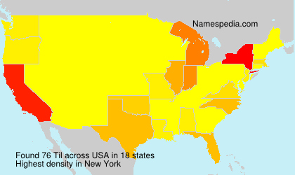 Surname Til in USA